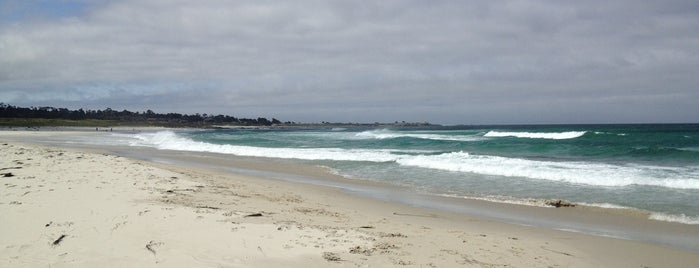 Asilomar State Beach is one of USA Trip 2013 - The West.