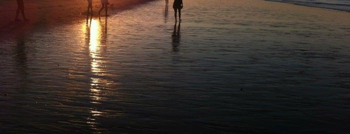 Playa Flecha de El Rompido is one of Para volver.