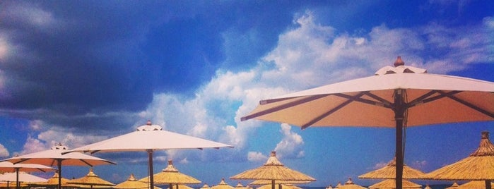 Umbrellas is one of 🌞🌊Chalkidiki-->to The Beach 🐋🐬🐟🐠🐡🦀.