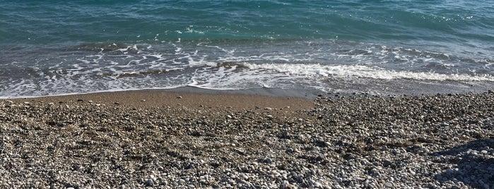 Tudors Beach No:7 is one of Antalya 6.