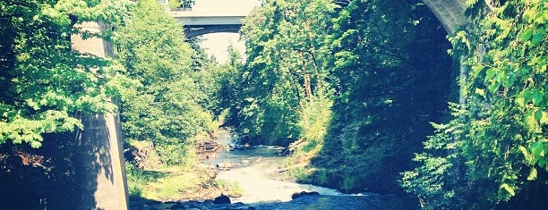 Tumwater Falls Park is one of Favorite Great Outdoors.