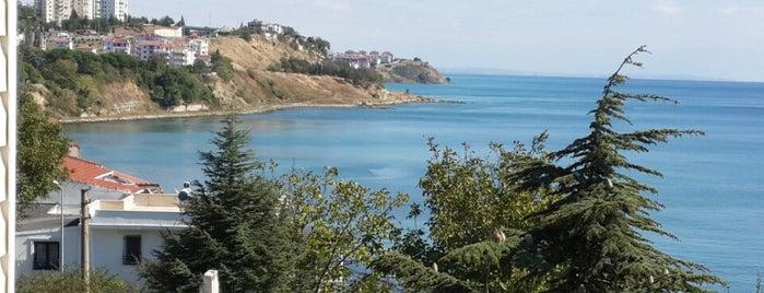 Dereağzı is one of Gezintii.