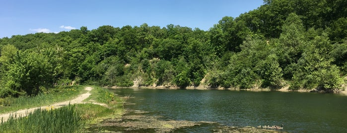 Kickapoo State Park is one of Illinois: State and National Parks.
