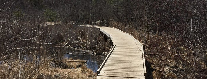 South March Highlands Conservation Forest is one of Kanata.