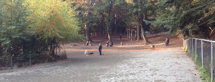 Golden Gardens Off-Leash Dog Park is one of Washington.