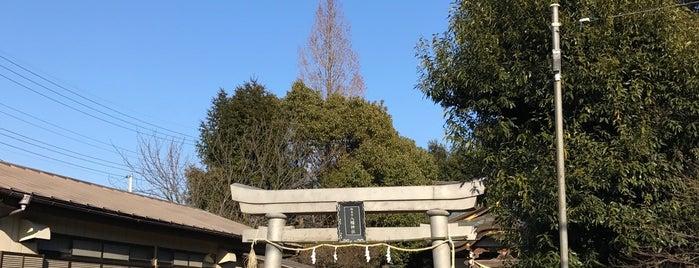 駒木台 八幡神社 is one of 地元で行く場所(流山市).