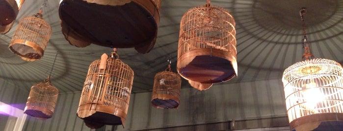 The Bird is one of Porto.