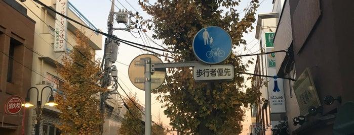 三井住友銀行 田園調布支店 is one of mayor.