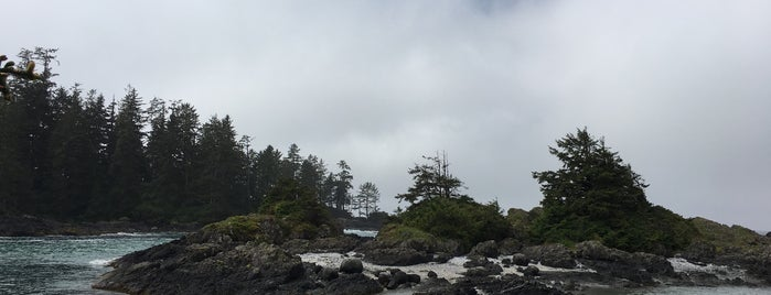 Pacific Rim National Park is one of Attractions to Visit.