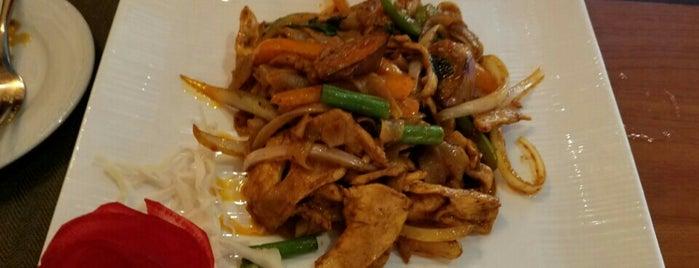 The 13 best thai restaurants in jacksonville for Angel thai cuisine riverside ca