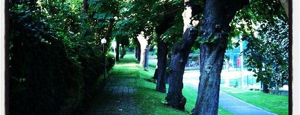 Veysi Paşa Korusu is one of İstanbul'daki Park, Bahçe ve Korular.