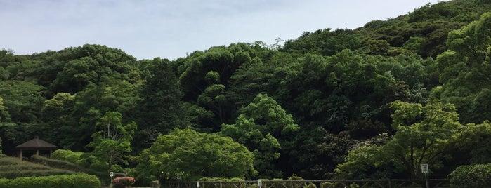 上山公園 is one of 日本の都市公園100選.