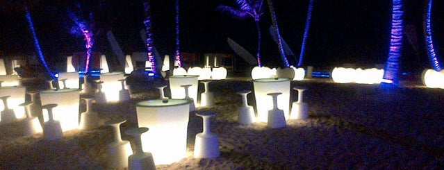 Paradisus Punta Cana Resort is one of DPKG #2.