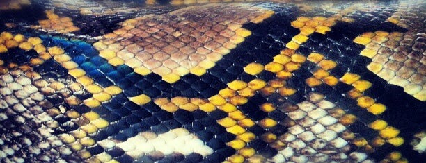 Snake Farme is one of koh samui.