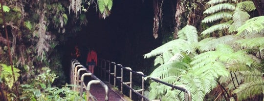 Thurston Lava Tube is one of HI spots.