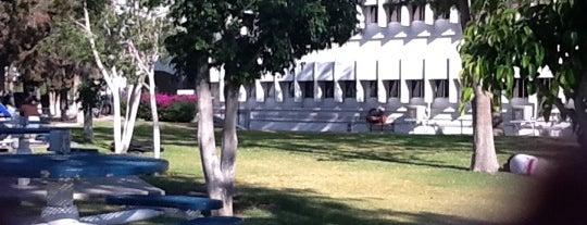 Edificio 3 is one of Laboratorios Especializados.