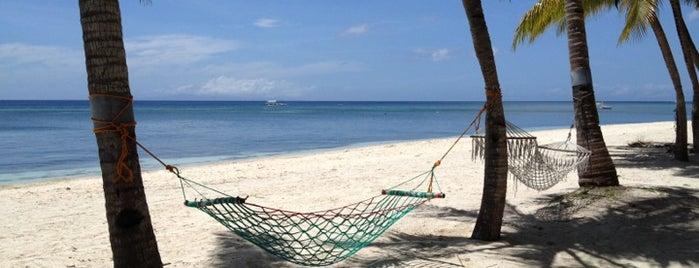 Bohol Beach Club is one of boggle.
