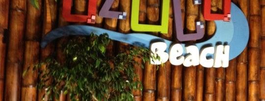 Azuca Beach is one of Ecuador best spots.