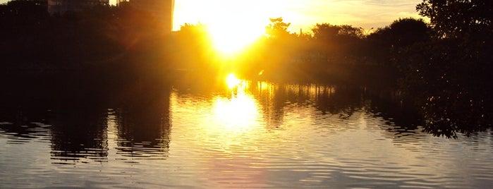 Lago Azul is one of Rio claro.