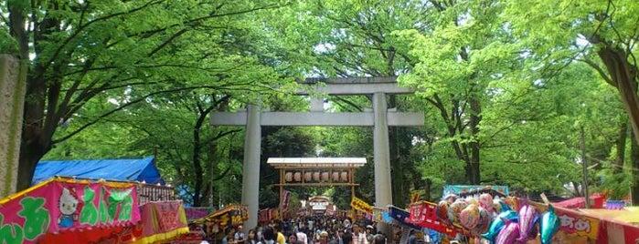 Okunitama Shrine is one of 国立・立川・府中周辺.