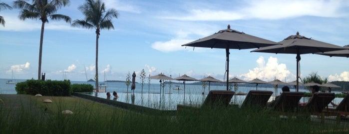 Hansar Samui Resort & Spa is one of Hotel.
