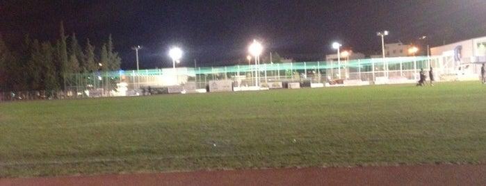 Spata Municipal Stadium is one of s.