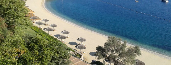 Assaggio is one of Bodrum !!.