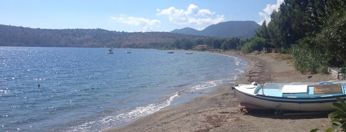 Καμάρες is one of Must-visit Beaches in Laconia.