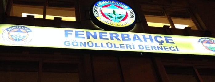 Fenerbahçe Gönüllüleri Derneği is one of İstanblue.