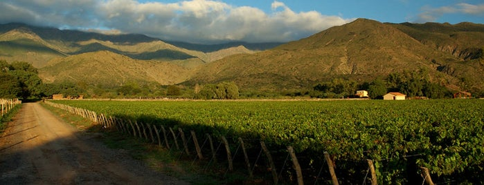 Salta is one of Rutas del Vino.