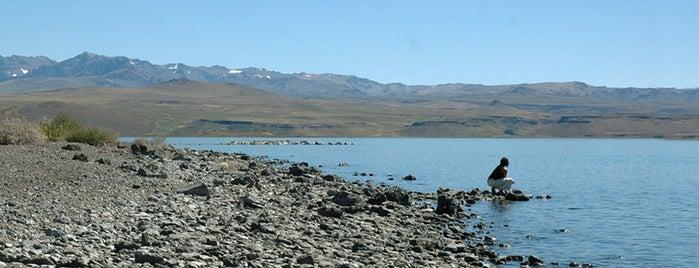 Parque Nacional Laguna Blanca is one of Parques Nacionales.