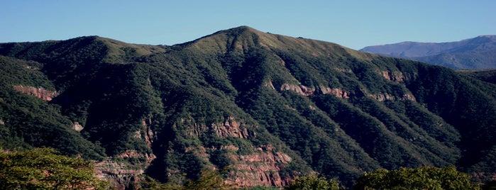 Parque Nacional Calilegua is one of Parques Nacionales.