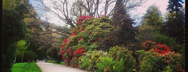 Queenstown Gardens is one of NZ to go.