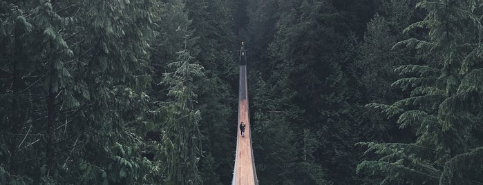 Capilano Suspension Bridge is one of Travel Guide to Vancouver.