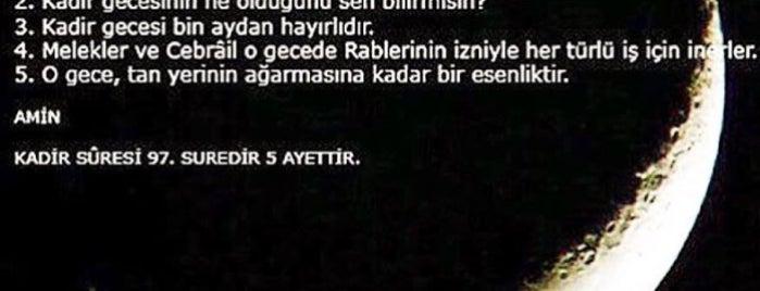 Sultana is one of Adana.