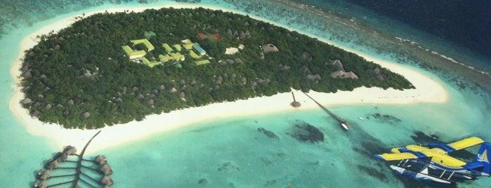 Lily Beach Resort & Spa, Island Hideaway at Dhonakulhi Counter is one of HAVALİMANLARI.