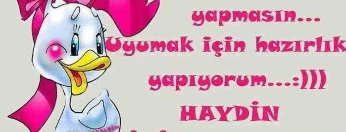 Göktaş Malikanesi is one of Huzurrr......