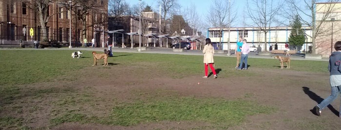 T.T. Minor Playfield is one of Seattle's 400+ Parks [Part 1].