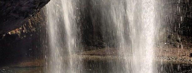 龍頭が滝 is one of 日本の滝百選.