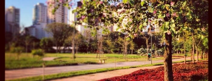 Parque do Povo (Mário Pimenta Camargo) is one of São Paulo - O que tem por perto?.