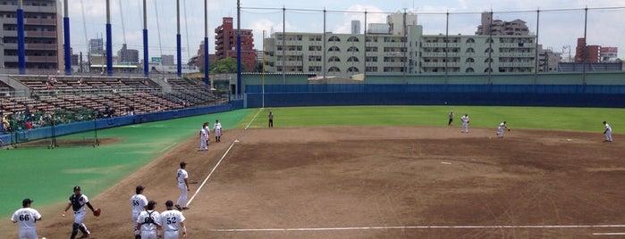 Nagoya Baseball Stadium is one of Japan Baseball Studium.
