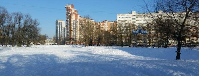 Пруд усадьбы Воронцова is one of house.
