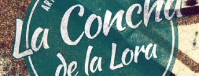 La Concha de La Lora is one of San José.