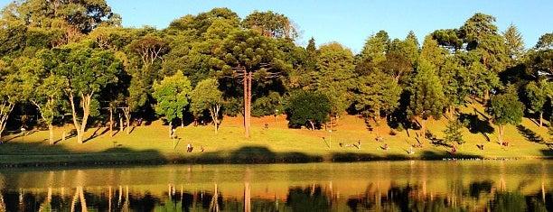 Parque São Lourenço is one of Parques de Curitiba.