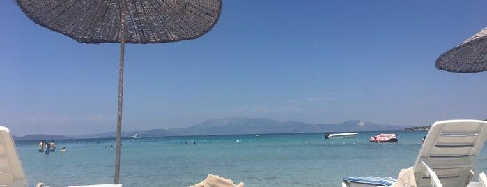 Miplaya Beach is one of HIT THE ROAD JACK!!!.