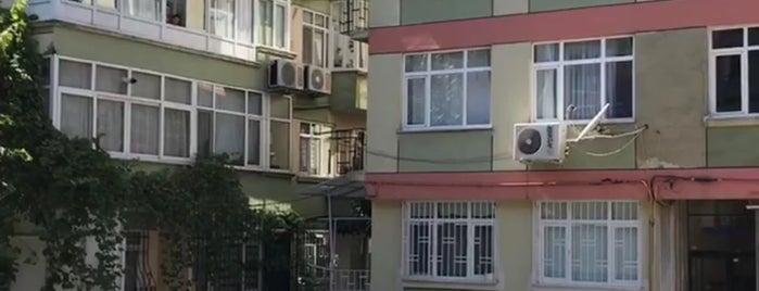 Topkapi Doga Koleji is one of Istanbul.