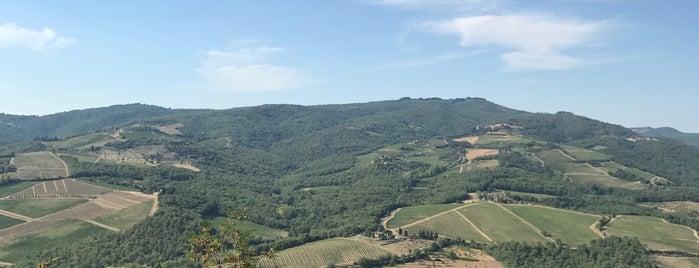 Vescine Radda In Chianti is one of Chianti Classico Producers.