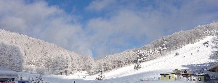 峰の原高原スキー場 is one of スキー場.