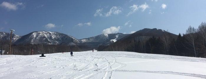 会津高原たかつえスキー場 is one of スキー場.
