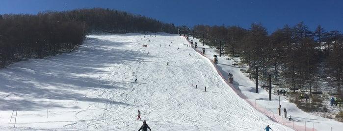 アサマ2000パークスキー場 is one of スキー場.